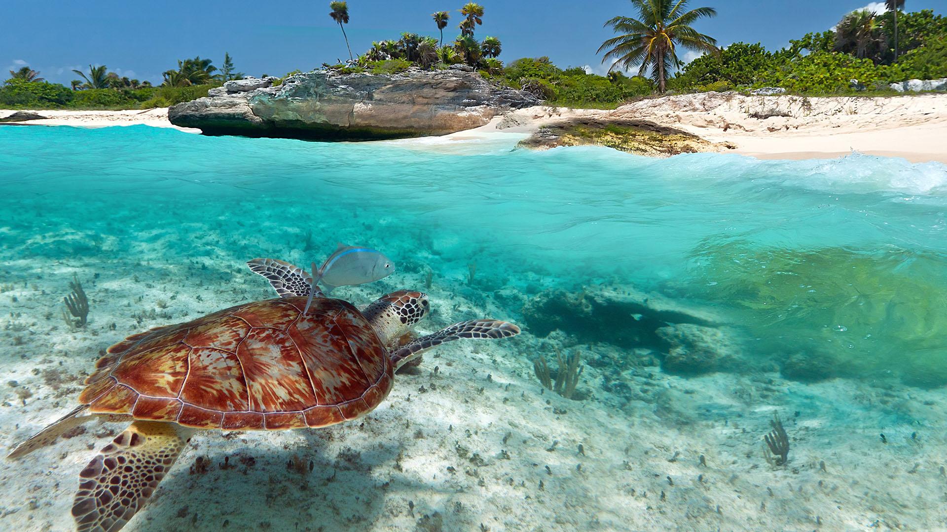 AvYachts Destination - The British Virgin Islands